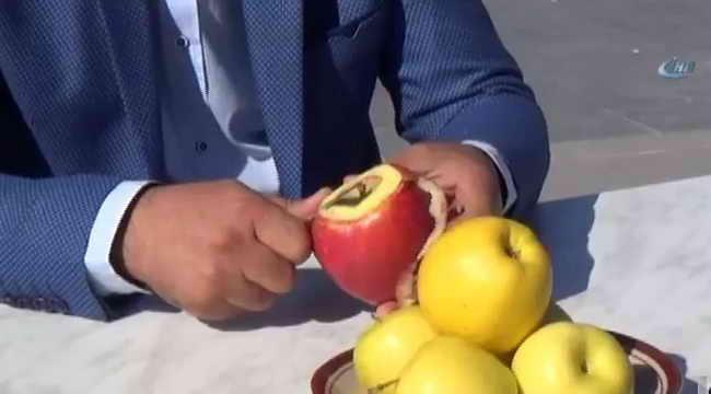 Самая длинная стружка с яблока